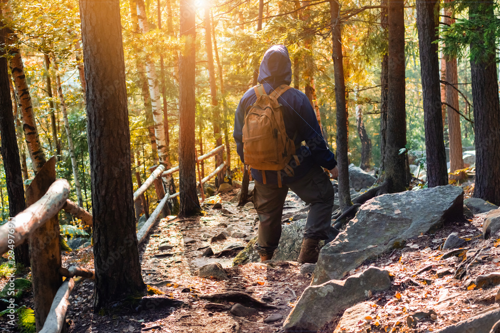 Fototapety, obrazy: Male traveller with backpack standing in autumn forest.