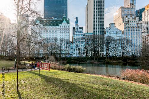 Carta da parati New York City, NY, USA - 25th, December, 2018 - Beautiful cold sunny day in Central Park lake with ducks near Gapstow Bridge