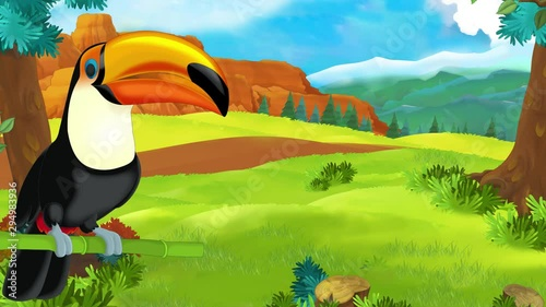 cartoon scene with toucan in the forest  - 294983936