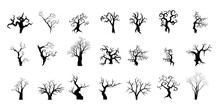 Silhouettes Of Trees Collection Halloween Concept.