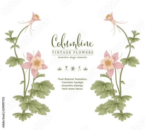 Valokuva Sketch Floral Botany Collection