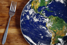 The Planet Earth Plate With A ...