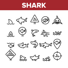 Shark Fish Collection Elements Icons Set Vector Thin Line. Dangerous Shark In Target And On Gps Mark, Human Silhouette In Water And Sharkfin Concept Linear Pictograms. Monochrome Contour Illustrations