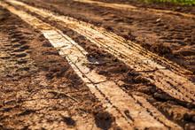 Wheel Track On Wet Soil Or Mud