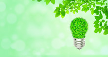 Ecology And Environmental Concept : Green Light Bulb With Green Leaves And Sunlight In Background.