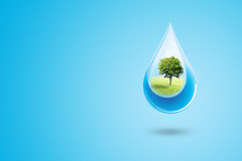 Ecology And Environmental Concept : Green Trees In Blue Water Drop Falling To Floor.