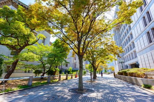 大阪市北区中之島の風景