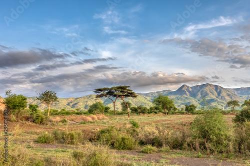 Photo ethiopian landscape near Arba Minch