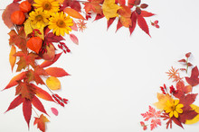 Autumn Leaves And Flowers On W...