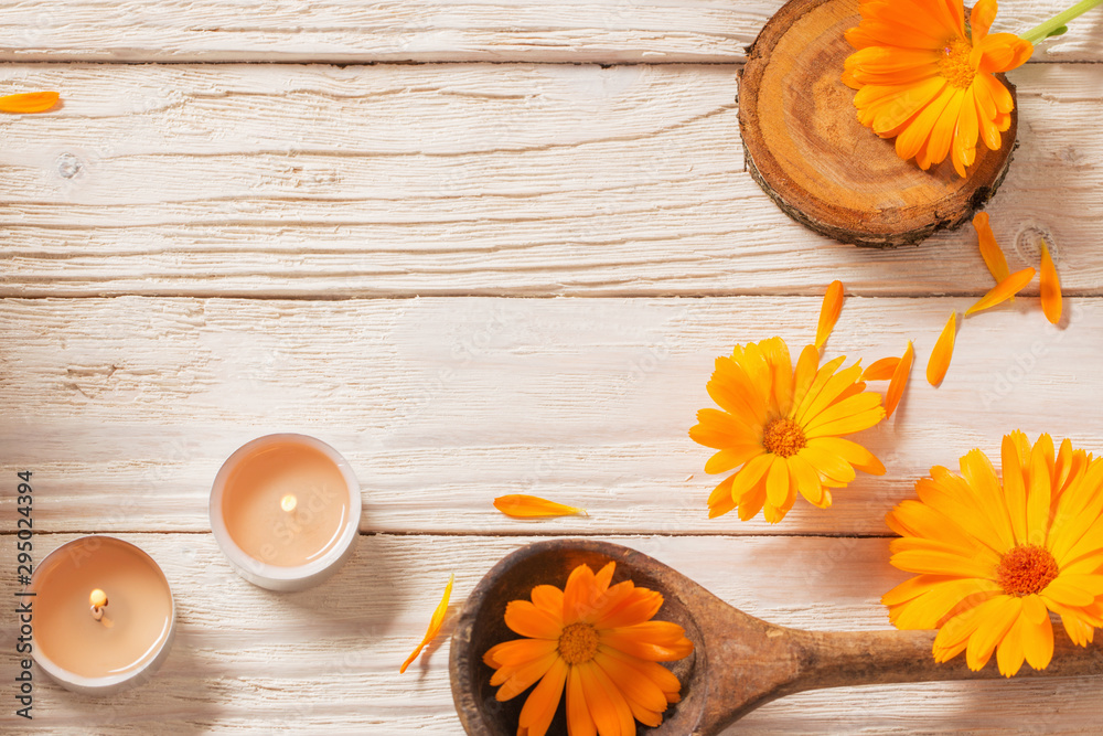 Fototapety, obrazy:  Medicinal flowers of calendula on white wooden background