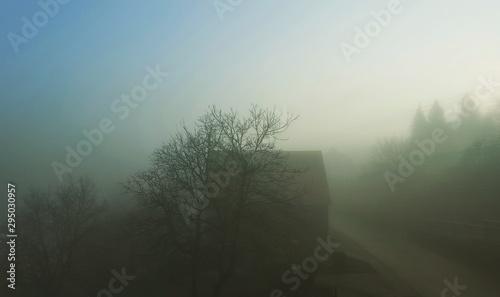 Poster Kaki foggy morning