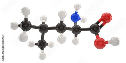Leucine molecule structure 3d illustration with clipping path Canvas Print