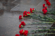Red Roses And Carnation Symbol Of Mourning - Laying Flowers To The Monument, Telephoto