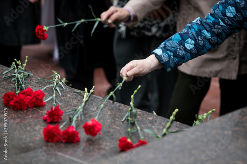 Red roses and carnation symbol of mourning - laying flowers to the monument, tel Wallpaper Mural
