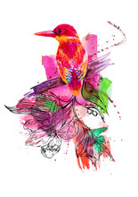 Tropical Bird, Painted In Watercolor. Hand-painted Colorful Elements Isolated On White Background. Watercolor Spot, Colored Iridescence, Hand Painted Art Background For Scrapbooking, Cards Design