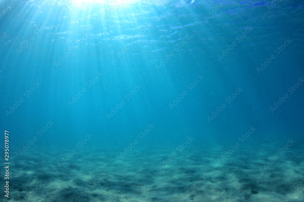 Fototapeta Underwater background of clear blue water on sandy sea floor