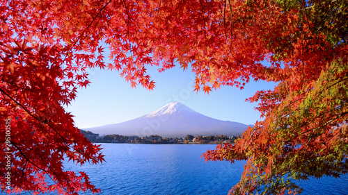 Foto auf Leinwand Violett rot The refreshing morning of Kawaguchiko Lake in autumn With a red maple leaf in the foreground