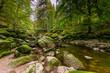 Wildbachklamm Buchberger Leite   Bayerischer Wald
