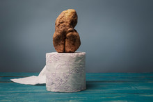 The Concept Of Modern Art. Potatoes In The Shape Of A Human Body On A Roll Of Toilet Paper.