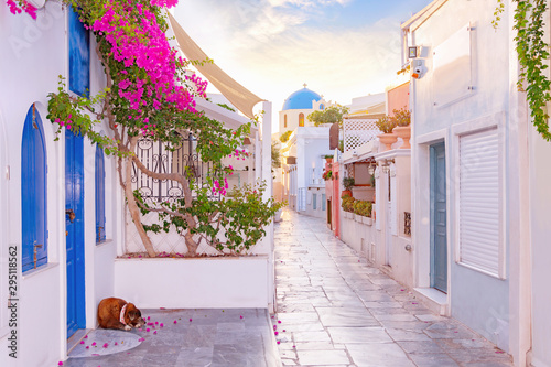Narrow scenic street of Oia Village on Santorini Island at sunset, Greece.