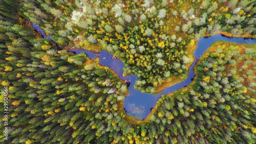 Poster Rivière de la forêt Autumn forest with yellow and red trees and blue river aerial view.