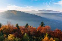 Misty Sunrise In Carpathian Mo...