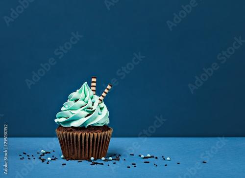 Blue Chocolate Birthday Cupcake Canvas Print