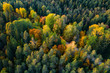 Leinwanddruck Bild - Latvian autumn nature. Forest and road. View from the top.