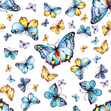 pattern blue butterflies