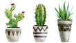 Set of watercolor hand-painted houseplants in flowerpots. can be used for poster, greeting card, scrapbooking, interior sketching. Trendy floral greenery elements isolated on white background