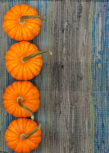 Four Pumpkins On Blue Table