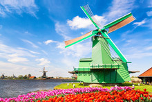 Dutch Landscape With Traditional Dutch Windmills With Colorful Tulips Near The Canal In Zaanse Schans Village, Netherlands. Spring Traditional Landscape In Netherlands