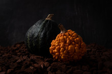 Dark Artistic Photo Of Beautiful Decorative Pumpkins On Wooden Ground With Black Background. Green And Orange Warty Pumpkin. Autumn Harvest, Thanksgiving Or Halloween Concept. Low Key Food Photography