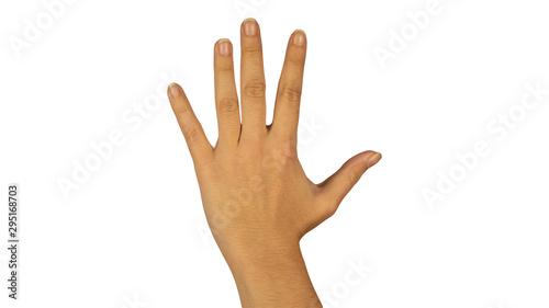main qui fait le chiffre 5 vu du dos de la main Canvas Print