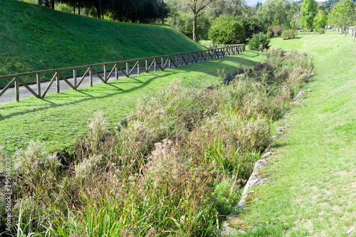 Fotografija An irrigation drainage canal overgrown with reeds and vegetation in a wild park