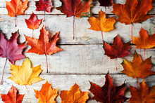 Autumn Wood Background With Or...