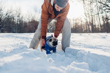 Pug Dog Walking On Snow With His Owner. Man Playing With Pet Outdoors