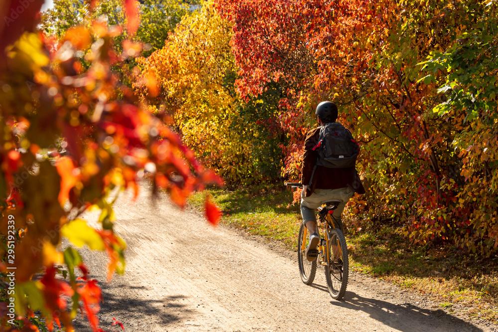 Fototapeta Cyclist riding a bike on Des Carrieres cycle path.
