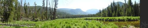 Foto auf AluDibond Pistazie landscape with lake and forest