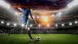 Leinwandbild Motiv Soccer player kicks the ball on the soccer field.Professional soccer player in action.