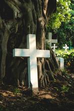Christ Cemetery In Thailand