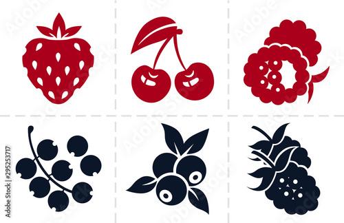 Photo Berries icon set