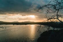 Galapagos Sunset Tree Silhouet...