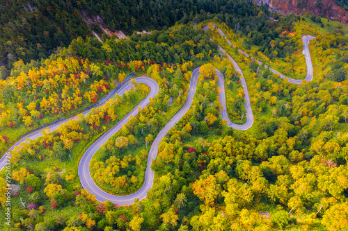Fotografie, Tablou  Aerial view of winding road on mountain in Autumn
