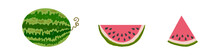 Vector Watermelon Set On White...