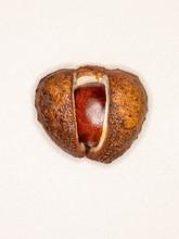 Ripe Horse Chestnut Pod  Burst...