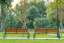 Benches In The Park. Two Wooden Empty Park Benches In The Park Among Green Trees And Green Grass