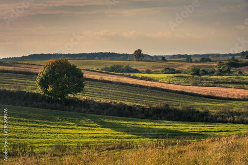 Masurian meadows at autumn near Banie Mazurskie, Masuria, Poland Fototapet