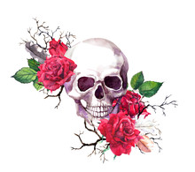 Human Skull In Red Rose Flower...