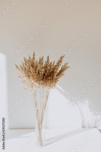 Beige reeds in vase standing on white table with beautiful shadows on the wall Canvas